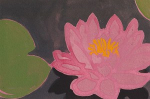 OBG lotus water lily 3